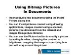 using bitmap pictures in documents