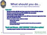 what should you do information used in support staff presentations2
