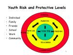 youth risk and protective levels