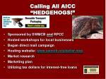 calling all aicc hedgehogs1