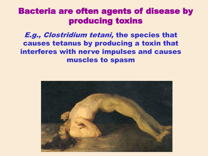 Bacteria are often agents of disease by producing toxins
