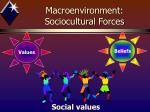 macroenvironment sociocultural forces