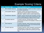 example scoring criteria