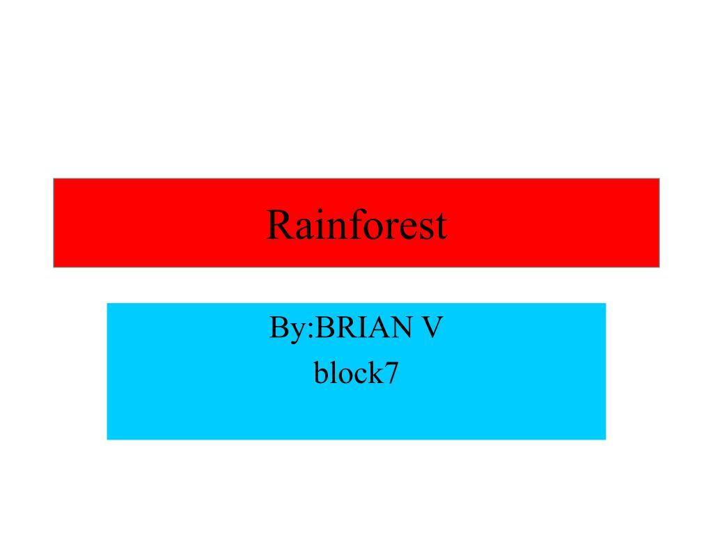 rainforest l.