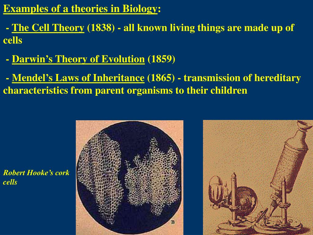Examples of a theories in Biology