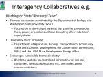 interagency collaboratives e g