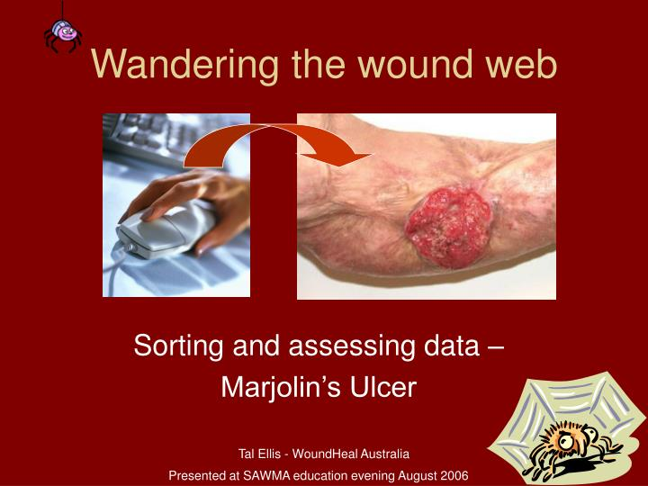 wandering the wound web n.