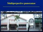 multiperpective panoramas2