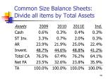 common size balance sheets divide all items by total assets