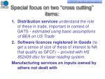 special focus on two cross cutting items