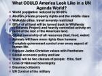 what could america look like in a un agenda world