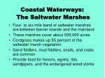 coastal waterways the saltwater marshes