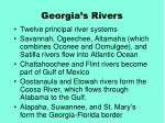 georgia s rivers