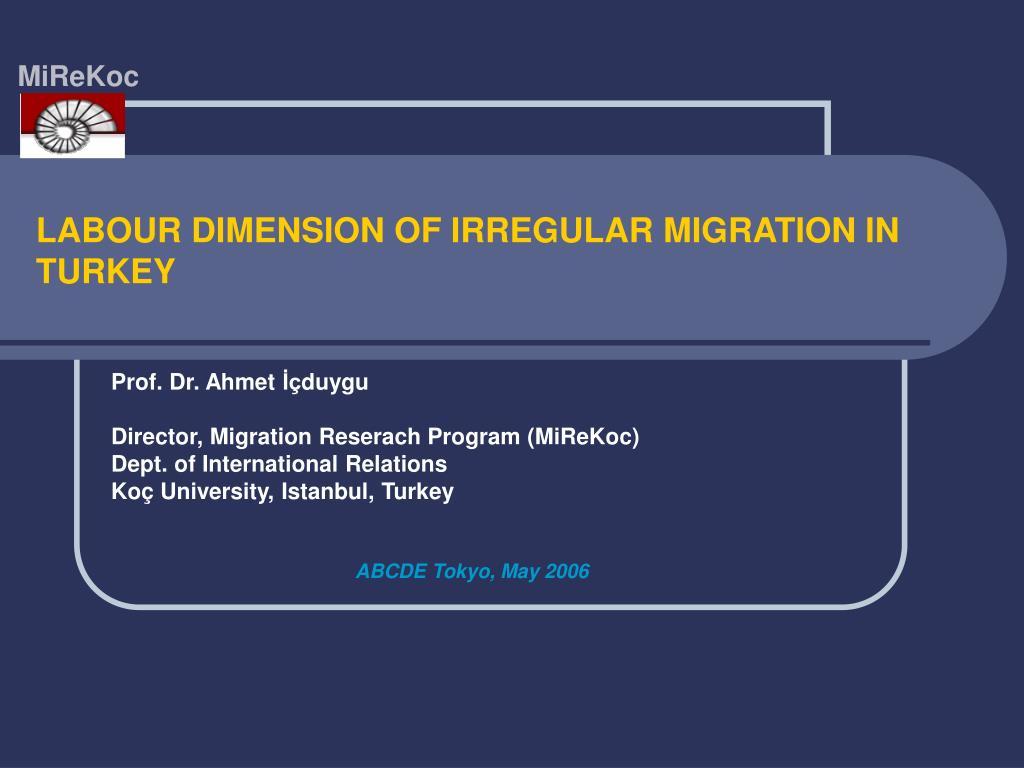 labour dimension of irregular migration in turkey l.