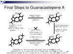 final steps to guanacastepene a