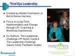 third eye leadership