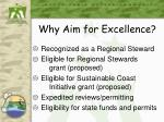why aim for excellence
