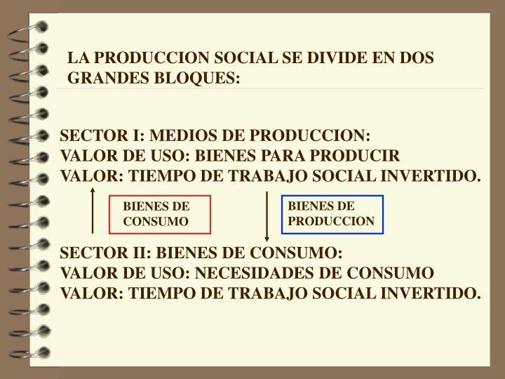 LA PRODUCCION SOCIAL SE DIVIDE EN DOS GRANDES BLOQUES: