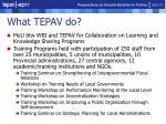what tepav do