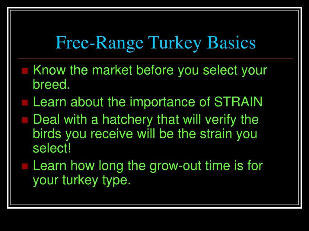 Free-Range Turkey Basics