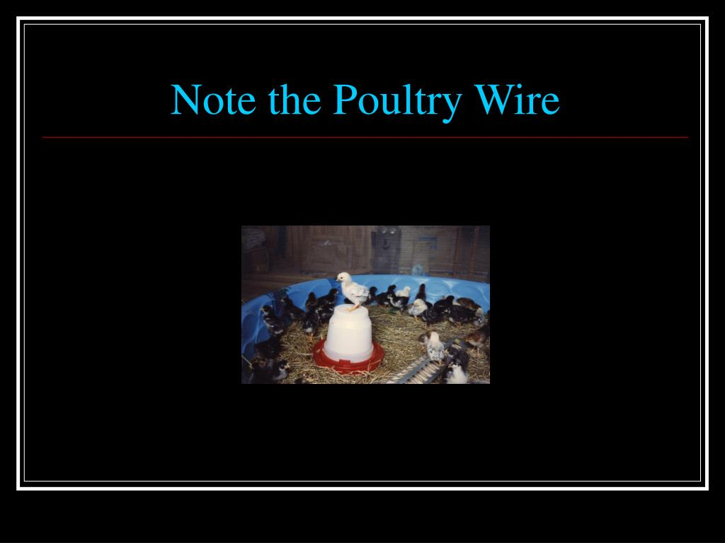 Note the Poultry Wire