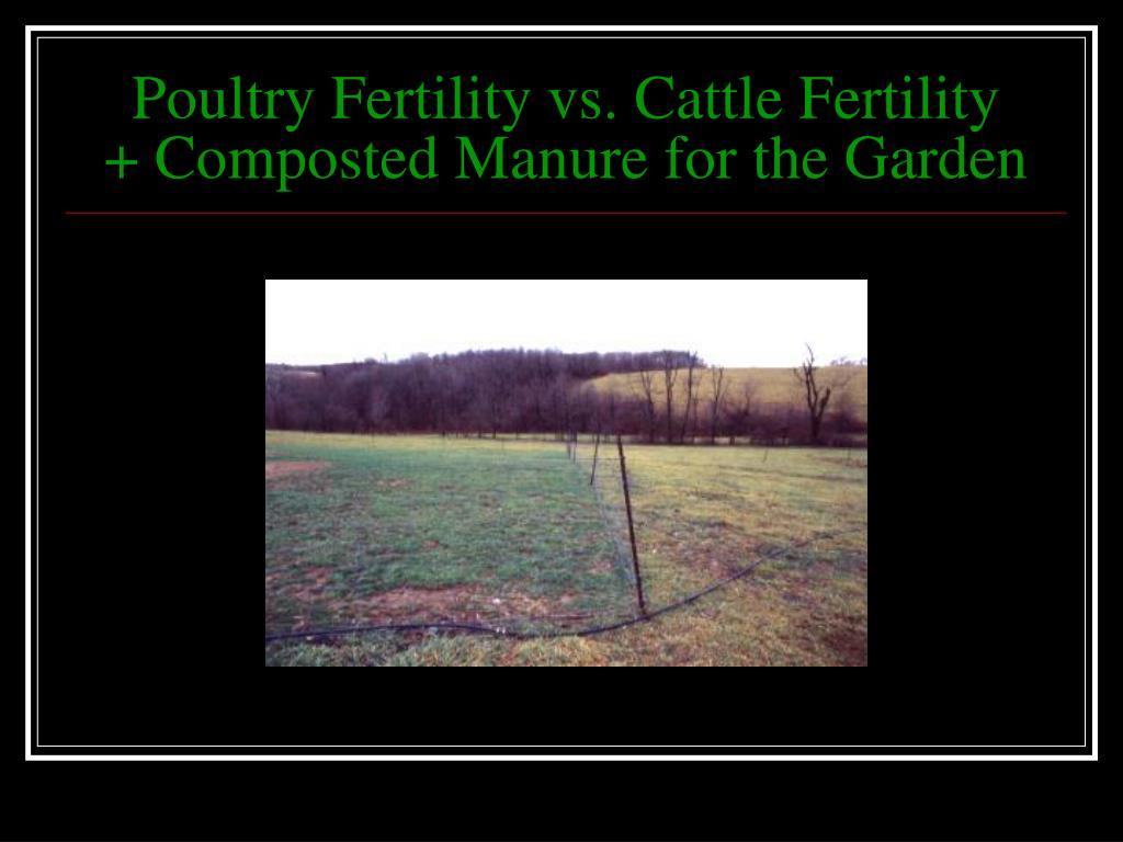 Poultry Fertility vs. Cattle Fertility