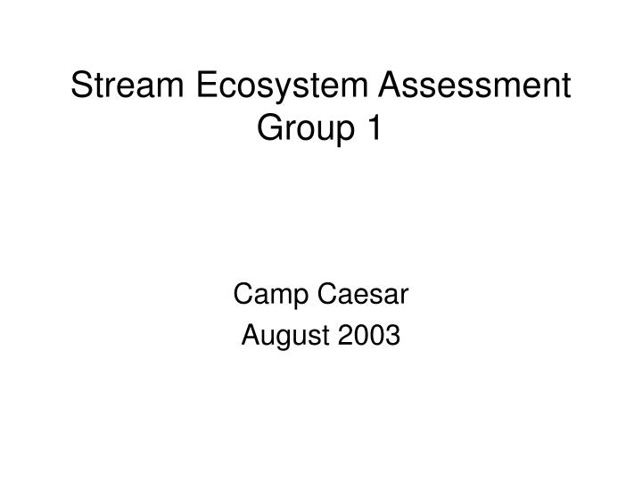 stream ecosystem assessment group 1 n.