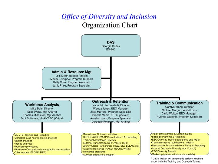 office of diversity and inclusion organization chart n.