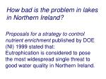how bad is the problem in lakes in northern ireland