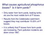 what causes agricultural phosphorus losses is it farm yards