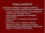 essay questions2