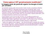 come agisce il bt geneticamente modificato1