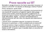 prove raccolte sul bt10