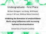 undergraduate first place