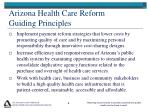 arizona health care reform guiding principles1