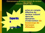connaissance et renforcement du secteur culturel suite