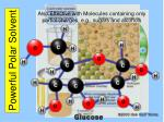 powerful polar solvent