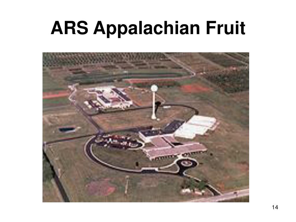 ARS Appalachian Fruit