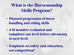 what is the horsemanship skills program