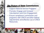 big picture of state commissions