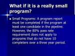what if it is a really small program