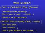 what is catch