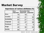 market survey4