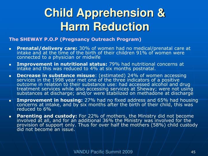 Child Apprehension &