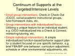 continuum of supports at the targeted intensive levels