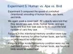 experiment 5 human vs ape vs bird