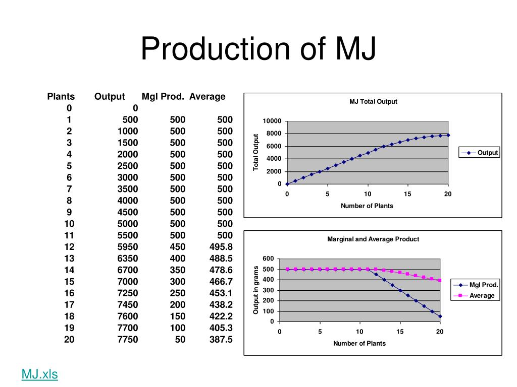 Production of MJ