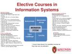 elective courses in information systems