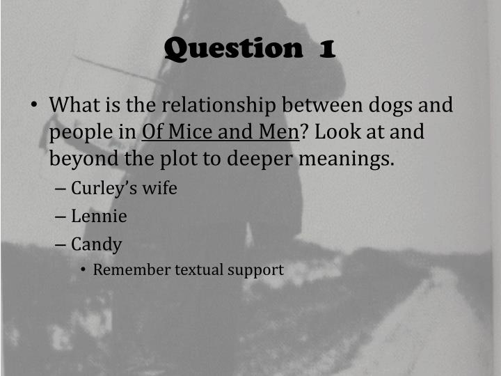 of mice and men the relationship between curley and curleys wife essay Start studying of mice and men learn what does curleys wife say is her husbands crooks and curley's wife both serve as examples of how people on.