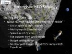 synergistic neo strategy